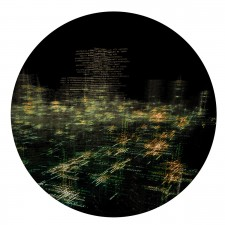 http://www.sharkmouse.farmediumclose.com/files/gimgs/th-29_wmFF_Image.jpg